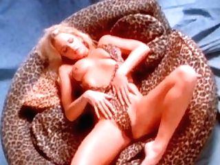 Penthouse Honey In Leopard Swimsuit Strips